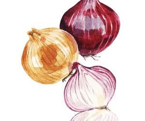illo-onions