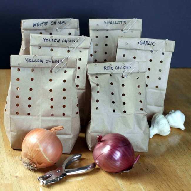 742005-650-1455274737-onions12