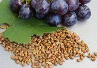 Vīnogu kauliņiem piemīt neticami vērtīgas īpašības
