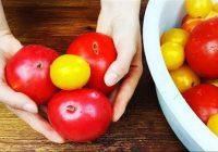 Tomātus ziemā vairāk nepērku! Lielisks veids kā uzglabāt tomātus cauru gadu